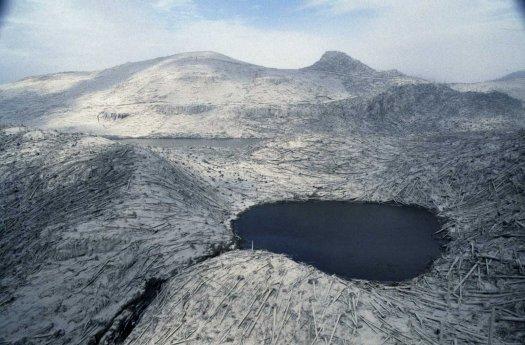 The_Eruption_Mount_St_Helens_1980 (27)